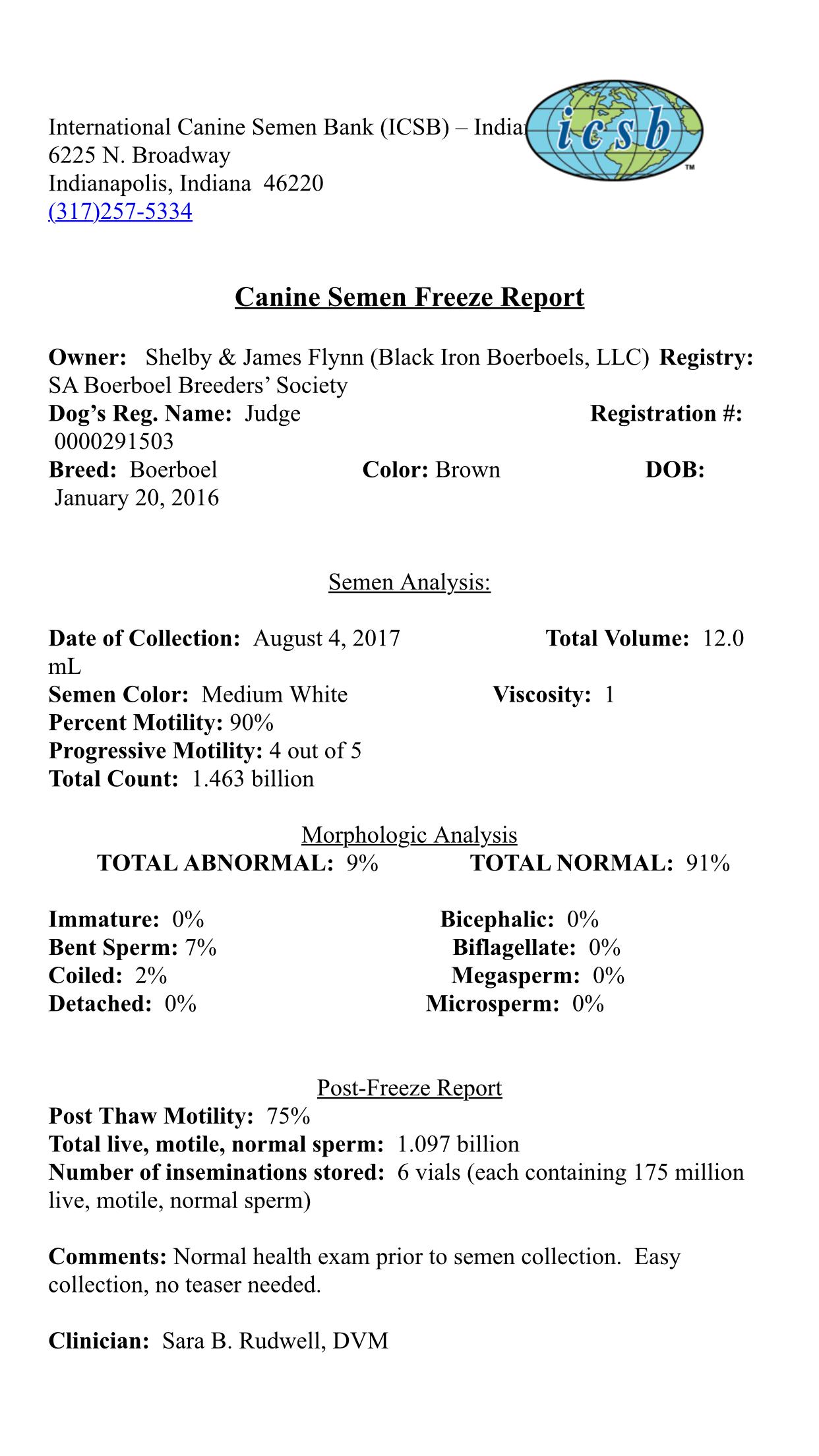 Judge - Black Iron Boerboels LLC